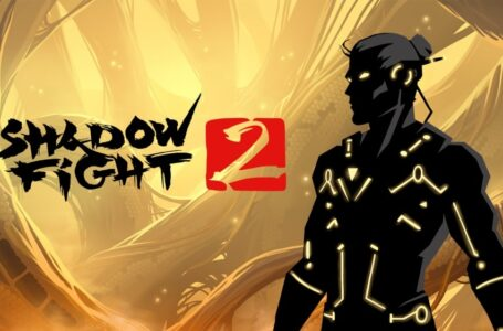 poradnik do shadow fight 2